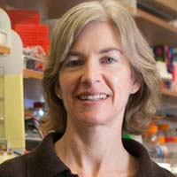 Image of Jennifer Doudna